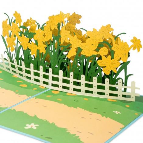 Daffodil Garden Pop Up Card