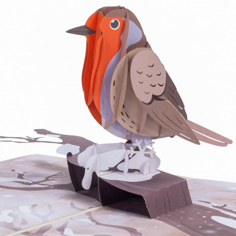 Robin Pop Up Card